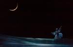 Лебединое озеро_41