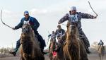 Верблюжьи бега - 2013_16
