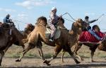 Верблюжьи бега - 2013_24