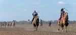 Верблюжьи бега - 2013_30