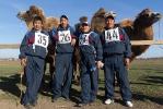 Верблюжьи бега - 2013_4