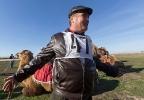 Верблюжьи бега - 2013_5