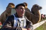 Верблюжьи бега - 2013_7