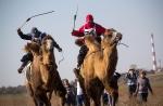 Верблюжьи бега_10