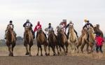 Верблюжьи бега_1