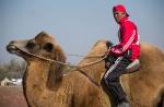 Верблюжьи бега_8