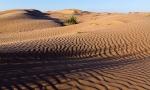 Пустыня_14