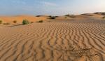 Пустыня_24