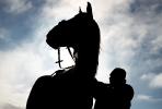 Казачьи конюшни_11