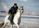 Казачьи конюшни_17