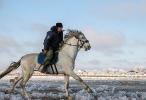 Казачьи конюшни_19