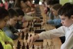 Шахматы_13