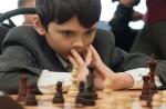 Шахматы_17