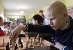 Шахматы_19