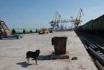 Порт Оля_2