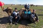 Верблюжьи бега - 2013_9