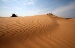 Пустыня_29