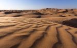 Пустыня_54