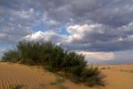 Пустыня_57