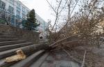Ураган в Астрахани_10