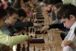 Шахматы_12