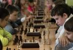 Шахматы_14