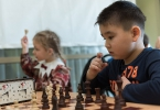 Шахматы_20